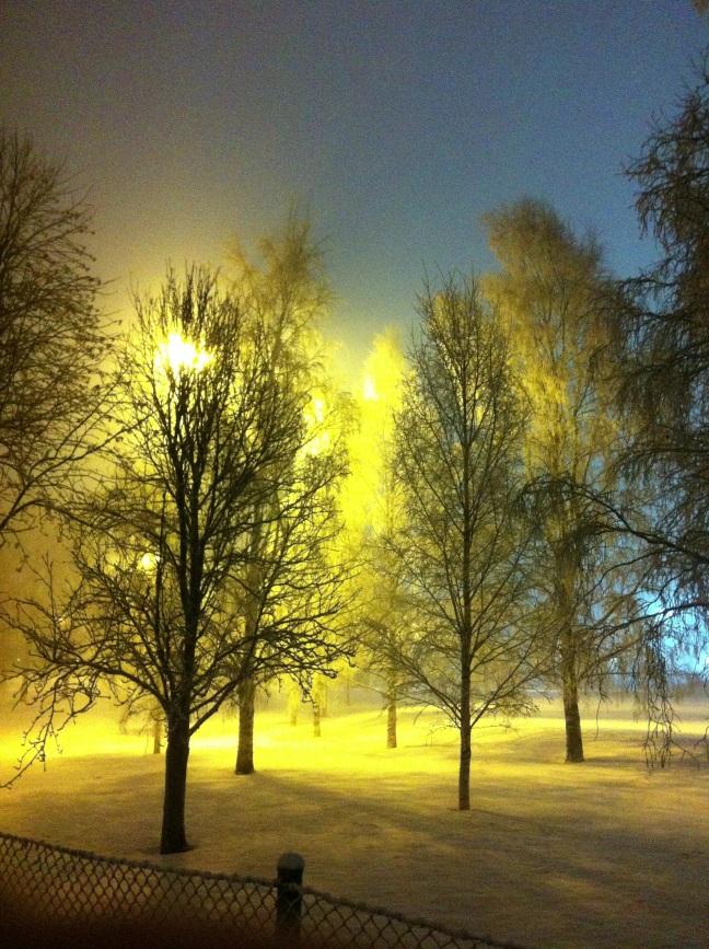 Umeå vinterskrud