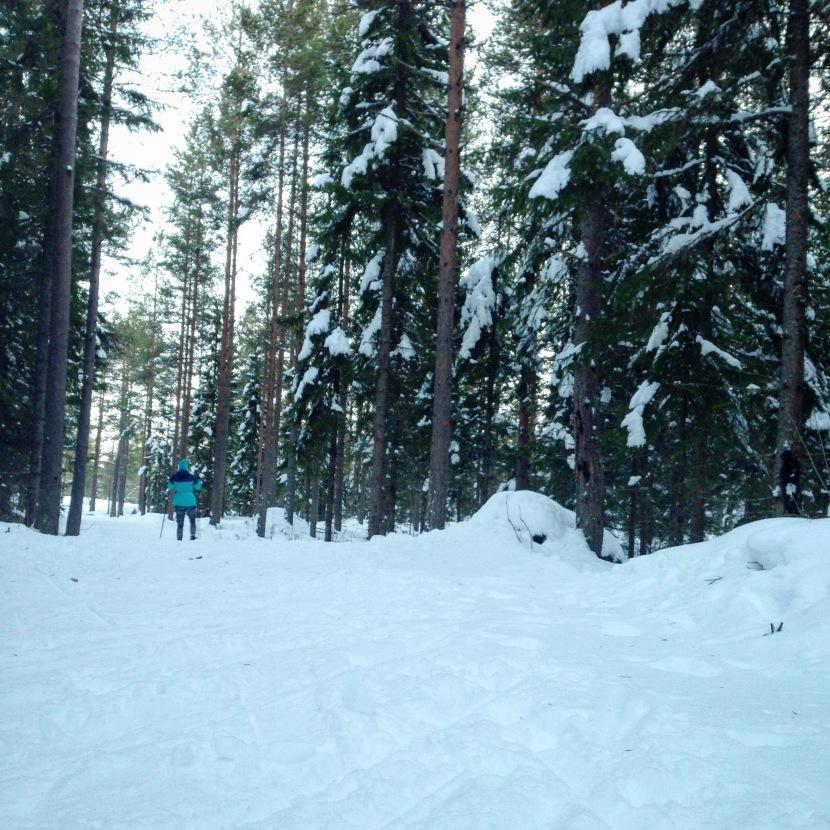 Premiär på skidor påSM-spåret