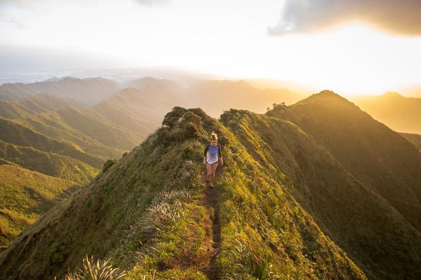 Hawaii here Icome