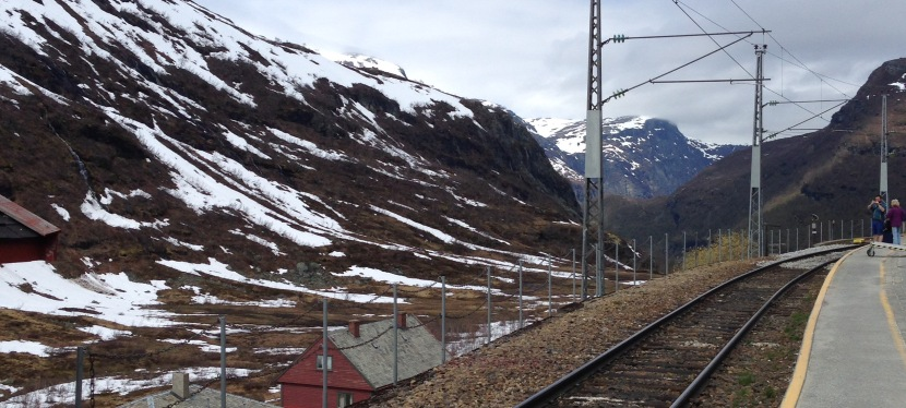 Blodomlopp och Norgeresa – v. 212017