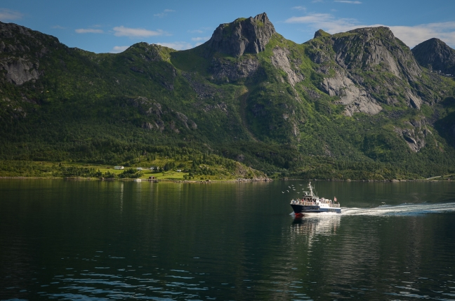 Lofoten (4 of 4)