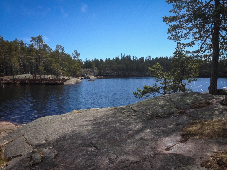 Trailrunning skuleskogen höga kusten (11)