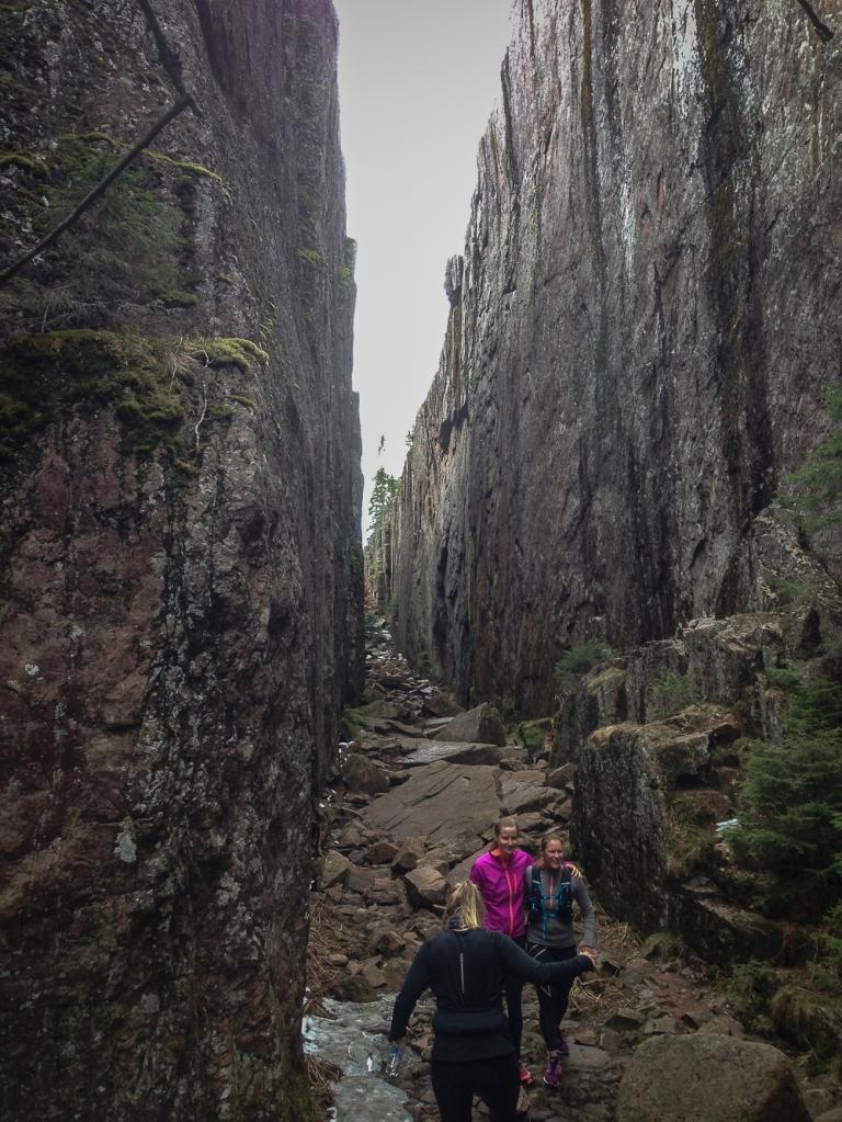 Trailrunning skuleskogen höga kusten (12)