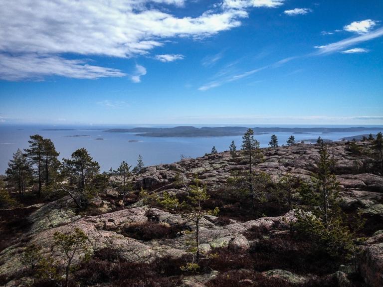 Trailrunning skuleskogen höga kusten (17)