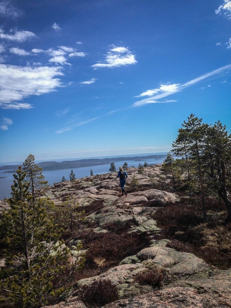 Trailrunning skuleskogen höga kusten (19)