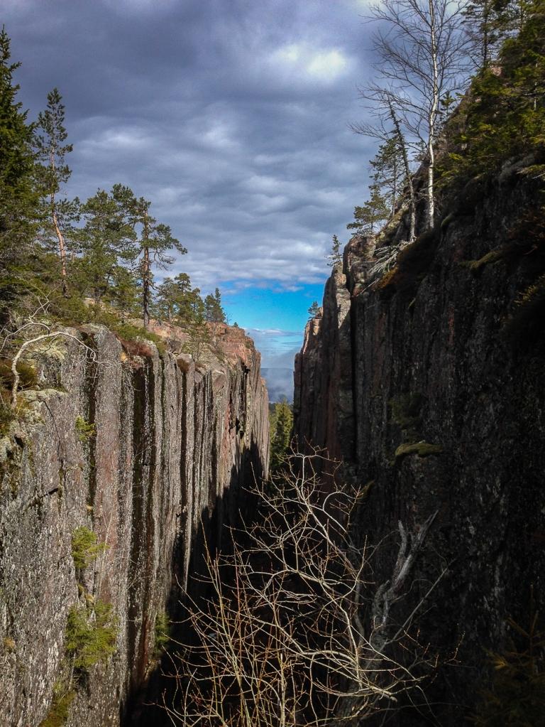 Trailrunning skuleskogen höga kusten (2)