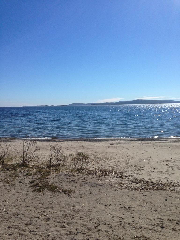 Trailrunning skuleskogen höga kusten (5)