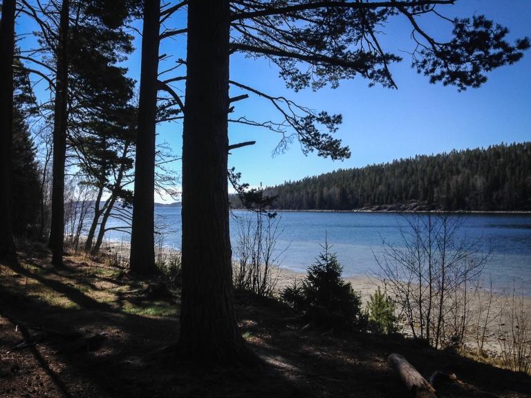 Trailrunning skuleskogen höga kusten (7)