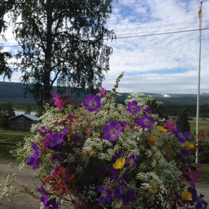 Hemresa, jetlag och arbetsveckan i Ammarnäs – v.29 och 302017