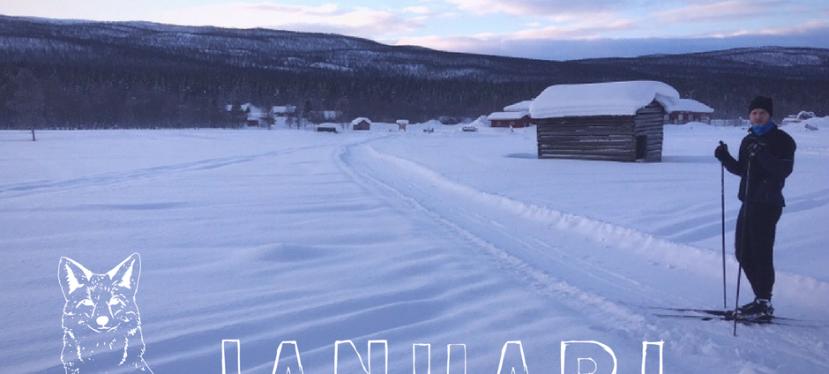 Månadens lista –Januari