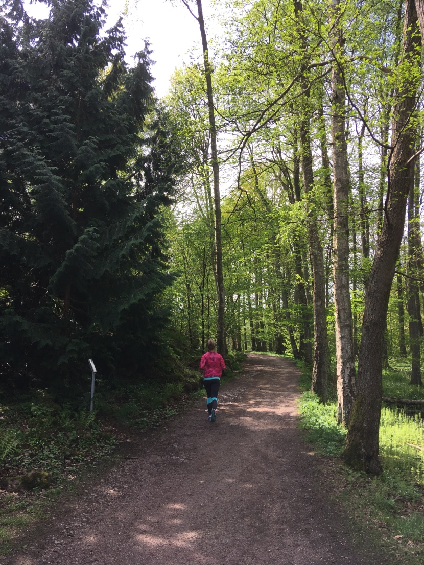 Blodomloppet 2018 – racereport