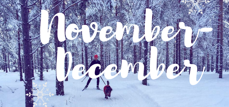 Månadens lista – November – December 2018